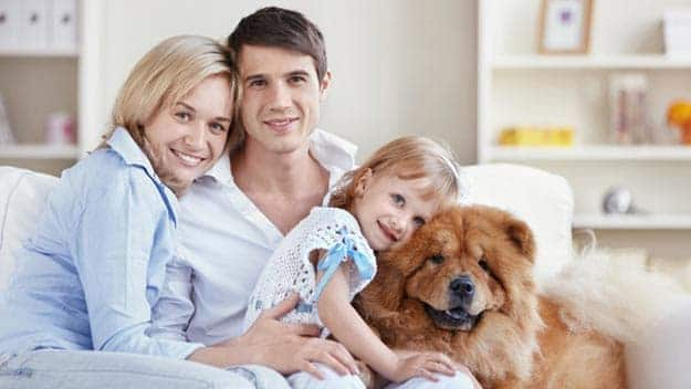 Wills & Trusts dog-young-family Direct Wills Cubitt Town